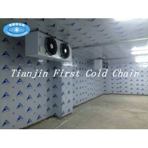 Personalización de China Cámara frigorífica / Almacenamiento / venta caliente Almacenamiento en frío para fruta vegetal