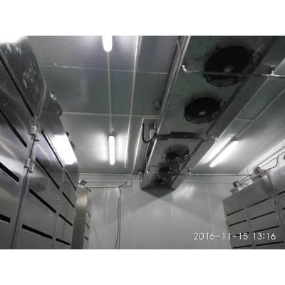 Máquina de descongelación de alta humedad a baja temperatura