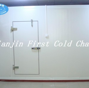 high quality Cold Room with color steel panels -18℃ for meat and fruit in China