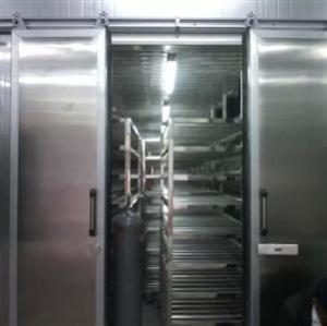 Equipo de descongelación para carnes de cerdo congeladas, mariscos y todo tipo de carnes.