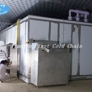 Fluidized Quick Freezer for Strawberries/Vegetable IQF Quick Freezing Equipment in China