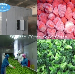China selling well all over world Individual quick frozen/ IQF freezer for Strawberries