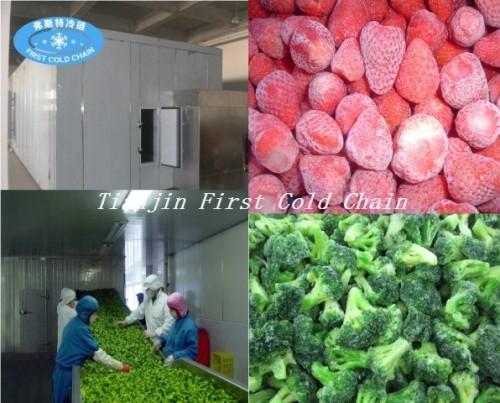 Línea de producción de chips congelados rápido y papas fritas IQF