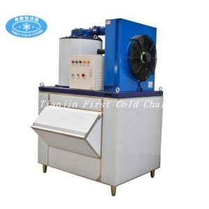 High quality Scale  ice maker machine 1T/24h for mear seafood processing