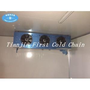 Роль морозильника в обработке и охлаждении морепродуктов