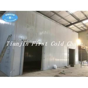 Высококачественная замороженная холодная комната для мяса и рыбы