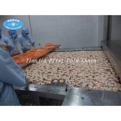Tipo de túnel de procesamiento de carne congelada de mariscos