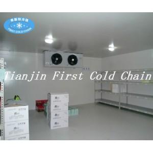 Almacenamiento de almacenamiento en frío de alta eficiencia