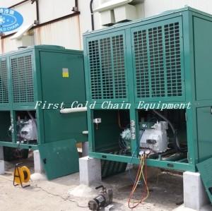 China, primer congelador de túnel de automatización de la cadena de frío 1500 kg / h para bolas de masa hervida, etc., de alimentos congelados