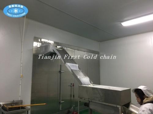 China hábil diseño doble congelador en espiral para pescado o carne