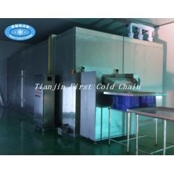 Congélateur rapide fluidifié par congélateur rapide IQF 1000kg / h pour le fruit de baies