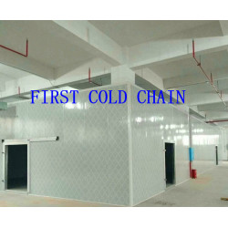 China supply Hight quality Cold Storage/ Room with stainless steel PU for Vegetable and Fruit