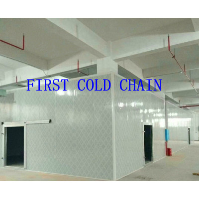 Suministro de China Almacenamiento frigorífico / sala de alta calidad con PU de acero inoxidable para verduras y frutas