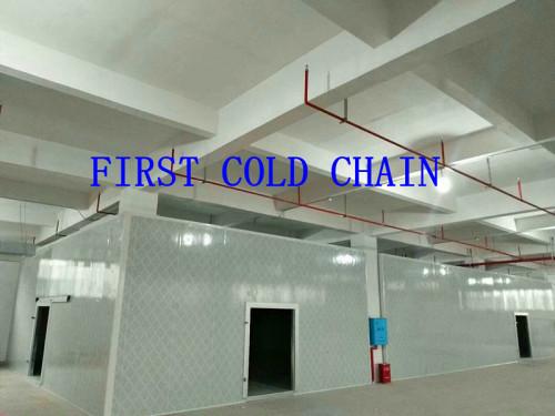 Depósito en frío de alta eficiencia de China / Espacio para verduras y frutas