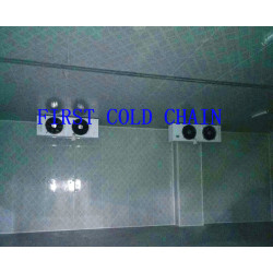 Factory supply Cool Room for Fruit Vegetable from China