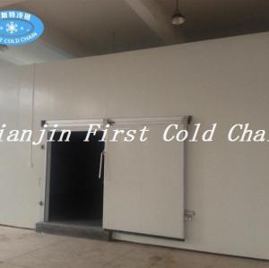 Быстрозамороженная небольшая холодная комната для мяса, рыбы, курицы, овощей и фруктов