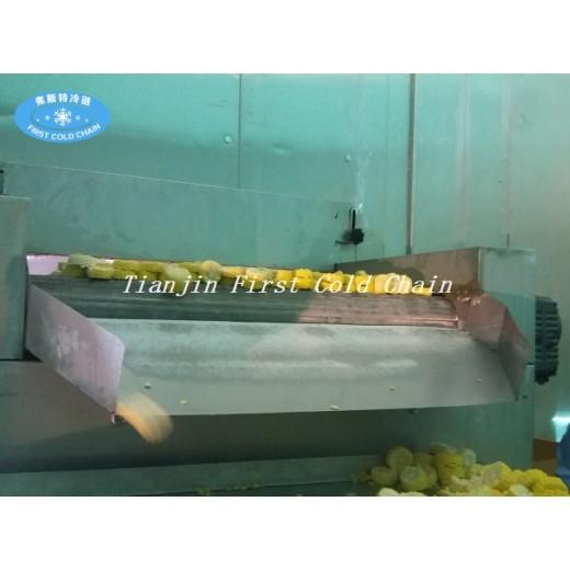 Китайская IQF морозильная и пищевая техника движутся в направлении интернационализации