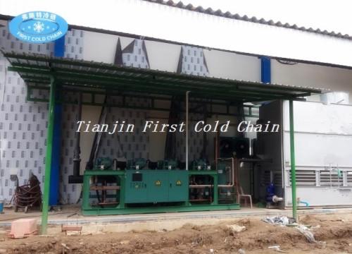 Congélateur rentable IQF de la Chine pour la machine de surgélation / haricot vert / fluidification IQF