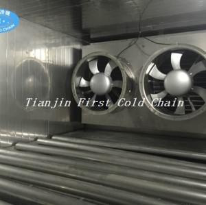 China Tunnel Freezers 300kg/h with Stainless Steel and well know brand compressor for frozen food