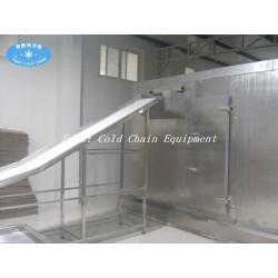 China high quality Spiral IQF Freezer 500kg/h for dumplings Shrimp or Fish