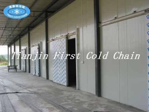 Depósito en frío rentable en China con acero color PU para pescado o carne