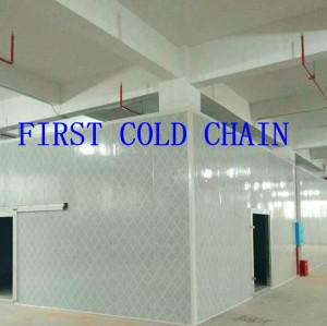 Китай Экономичное холодильное хранилище с цветной сталью PU для рыбы или мяса