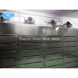 China Low Temperature High Humidity Thawing Equipment for meat products