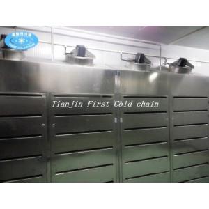 Equipement de décongélation par air à haute humidité et basse température pour produits carnés