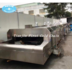 China liquid nitrogen Quick Freezer/ Liquid Nitrogen tunnel Freezer Machine