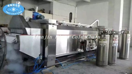 Comida nitrógeno líquido iqf congelador máquina criogénica túnel congelador rápido