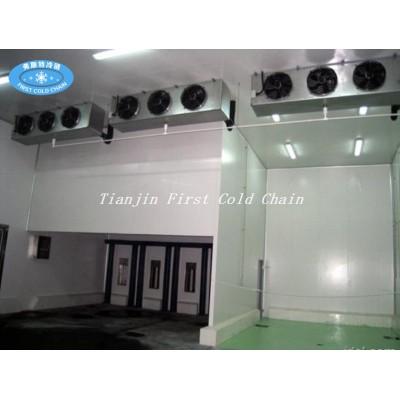Generador enfriado por aire DD SERIES enfriador de aire por evaporación para cámara frigorífica