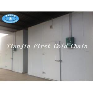 Chine personnalisation rentable de chambre froide / stockage / vente chaude stockage froid pour le légume ou le fruit