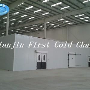 Stockage froid / chambre froide chaude de ventes de la Chine, pièce plus froide de réfrigérateur