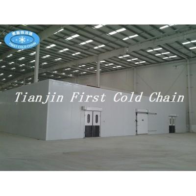 Depósito en frío de las ventas calientes de China / cámara fría, sitio de alta calidad del refrigerador