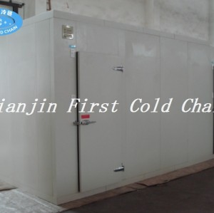 Китай поставляет небольшую холодную комнату в сочетании с используется для хранения фруктов / овощей