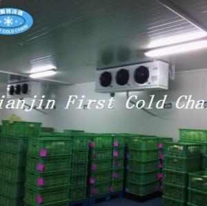 Chambre d'entreposage au froid de qualité supérieure pour les fruits de mer de Chine