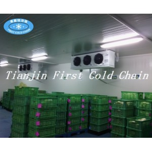 Hight quality Cold Storage Room for seafood from China