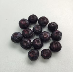 Food Lyophilizer Vegetable and Fruit Vacuum Freeze Dry Machinery