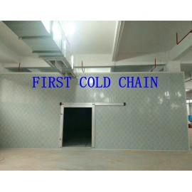 Cámara frigorífica de alta rentabilidad en China para pescado o carne
