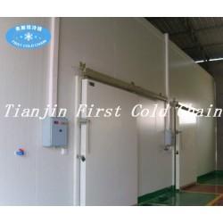 China suministra una alta capacidad de almacenamiento en frío / cámara frigorífica para alimentos congelados
