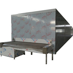 China automation Tunnel Freezer 1500kg/h for fish kinds of frozen food