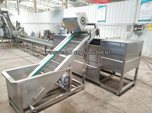 Frites 100kg / h Forzen faisant la machine pour la chaîne de production de pommes de terre frites d'usine