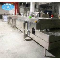 China liquid nitrogen iqf freezer machine -196℃ 1000kg/h tunnel freezer