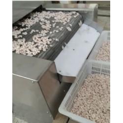 Impingement Tunnel Quick Freezer with 500kg/Hr-3000kg/Hr Capacity for Shrimp