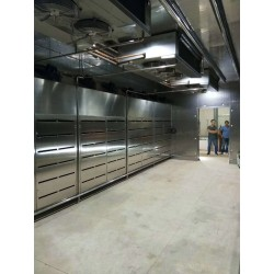 Hight quality Frozen Meat Food Low Temperature Thawing Room /Machine