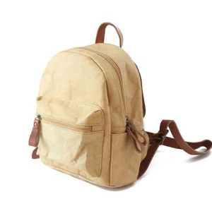 Attractive Design Tyvek Paper Bag Tyvek Backpack