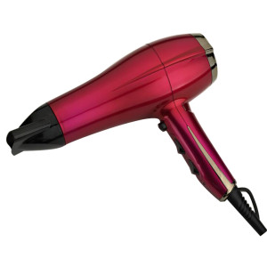 Induction Hair Dryer