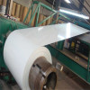 Eco-Friendly Exporter Prepainted Cold Dipped Galvanized Steel Coil
