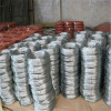 Galvanized wire / shining galvanized iron wire