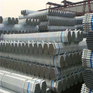 Hollow section steel tube for structure